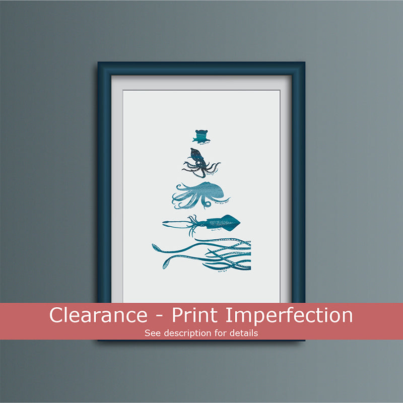 Clearance - Octopus and Squid Species Art Print