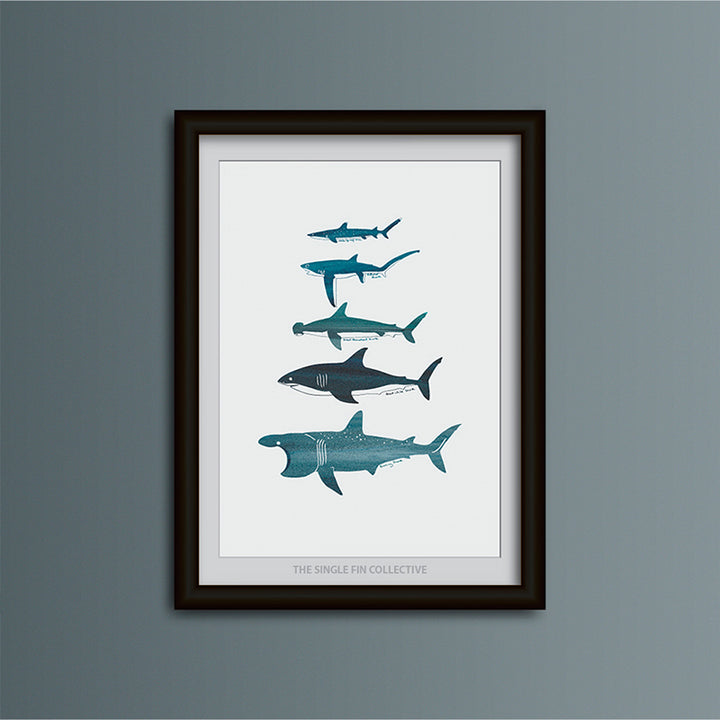 Shark Species Art Print