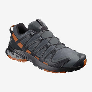 Salomon Mens XA Pro 3D Gore-Tex V8 Hiking Shoe,MENSFOOTHIKEWP SHOES,SALOMON,Gear Up For Outdoors,