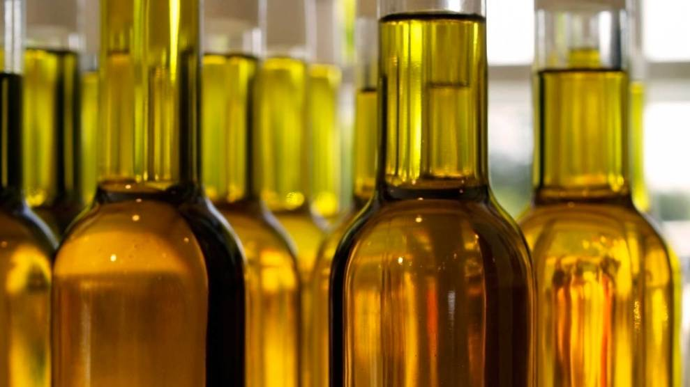 Fake Olive Oil: What You Must Know