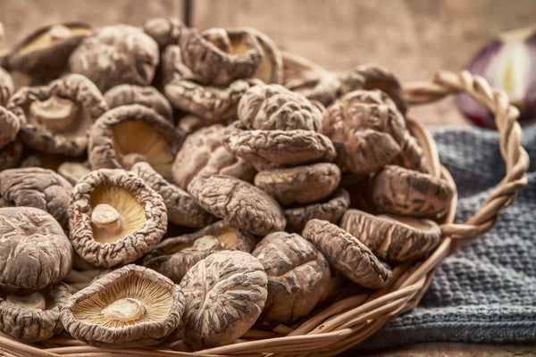 Shiitake Mushrooms: Culinary Delight and Superfood Powerhouse