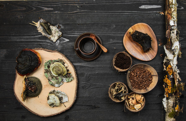 7 Mushroom Powders and Blends That Can Support Your Immune System