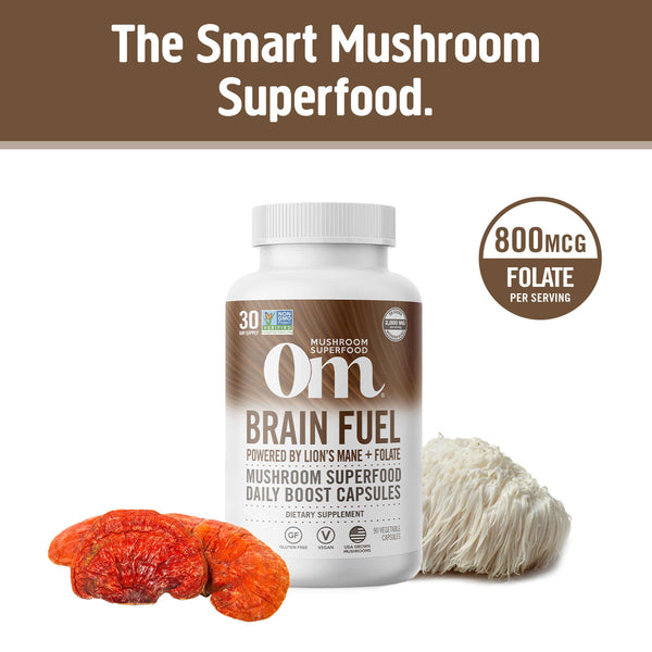 Brain Fuel: Lion's Mane + Vitamin B9