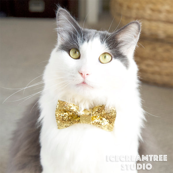 Green Christmas Tree on Little Car Bow Tie - Pet Bow Tie