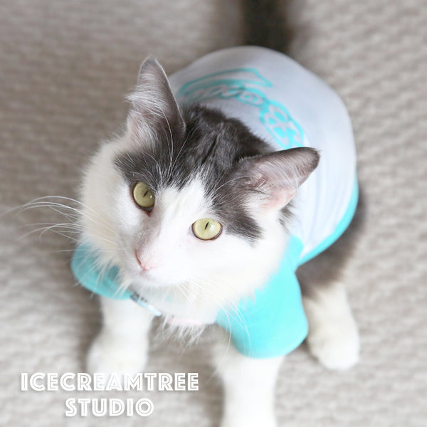 Turquoise Aqua Custom Name Baseball Tshirt - Pet Outfit