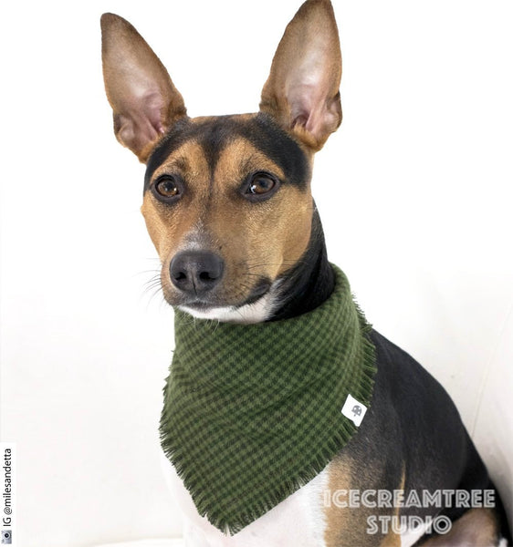 Dark Moss Green Houndstooth Bandana - Tie on Classic Flannel Pet Bandana Scarf