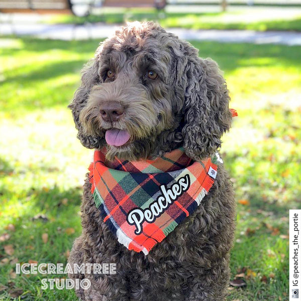 Red White Blue Plaid Bandana - Tie on Classic Flannel Pet Bandana Scarf