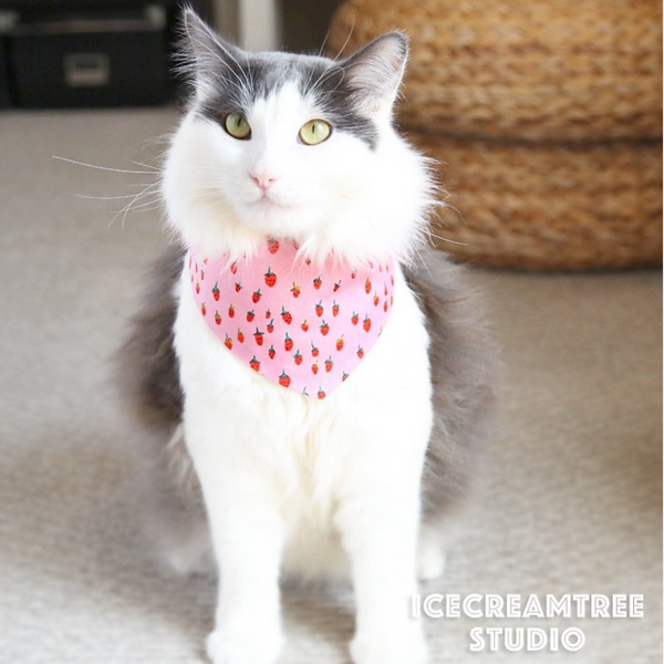 Pink Strawberry Bandana - Tie on Modern Pet Bandana Scarf