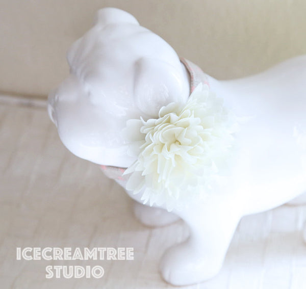 Full Cream Bloom Collar Slide On - Large Flower Collar Accessory