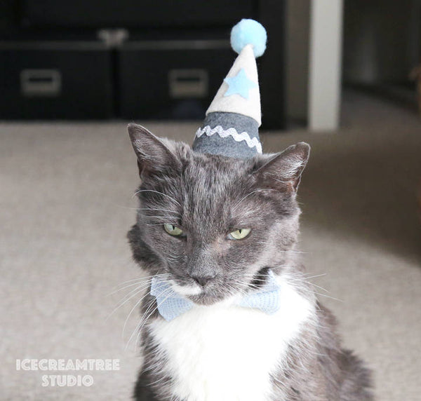 Navy Birthday Felt Hat - Pet Birthday Hat