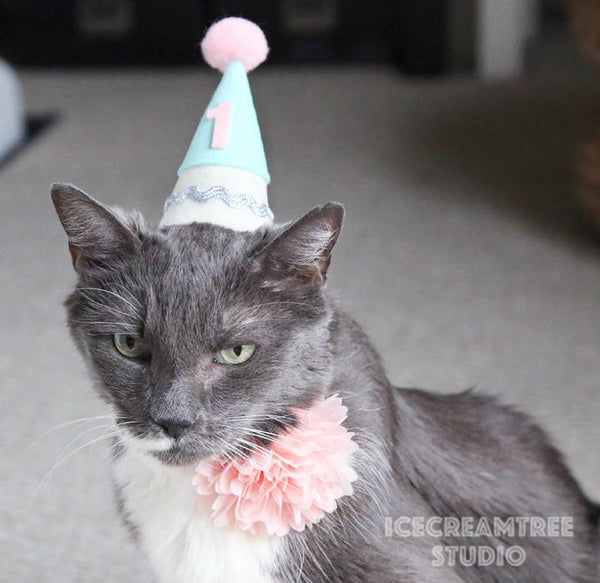 Mint Green, Blue Birthday Felt Hat - Pet Birthday Hat