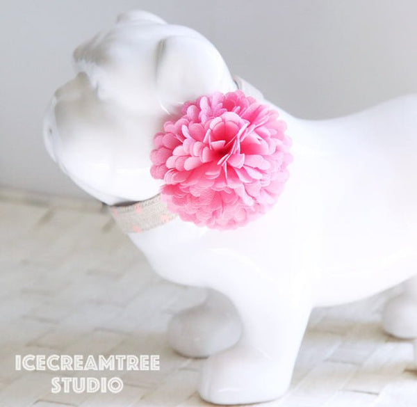 PomPom Pink Sorbet Bloom Collar Slide On - Small Flower Collar Accessory