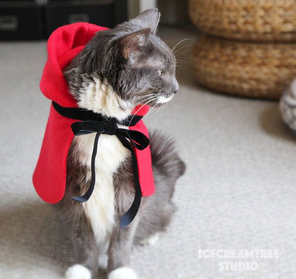 Little Red Riding Hood - Pet Costume