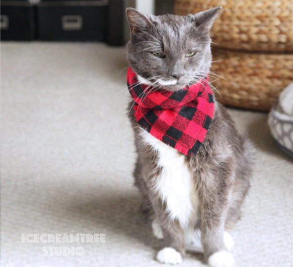 Adventure Awaits Bandana - Tie on Classic Flannel Pet Bandana Scarf