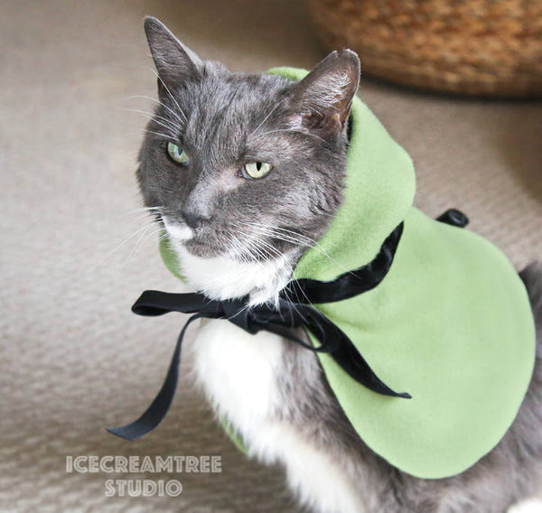 Robin Hood Cape - Pet Costume