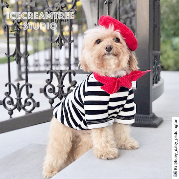 French Look Outfit Set - Pet Costume Set