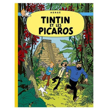 Load image into Gallery viewer, Tintin And The Picaros