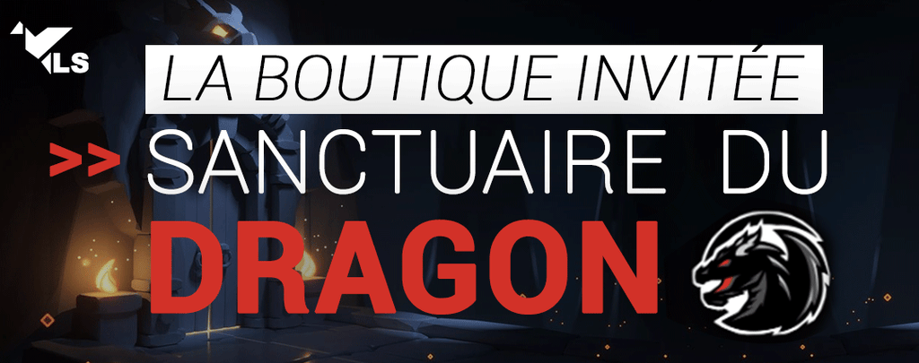 Le Sanctuaire du Dragon : Votre Boutique Dragon
