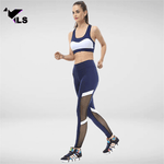 Bas Fitness Workout Transparent