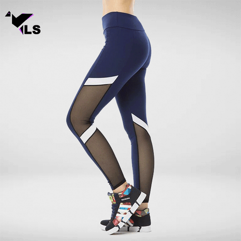 Legging Fitness Workout Transparent
