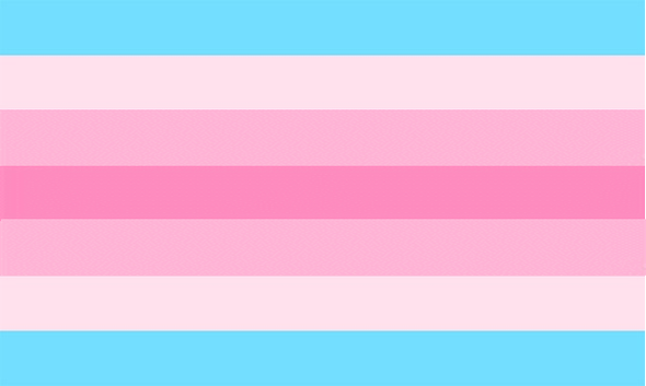 Transgender Female (XTF) Pride Flag