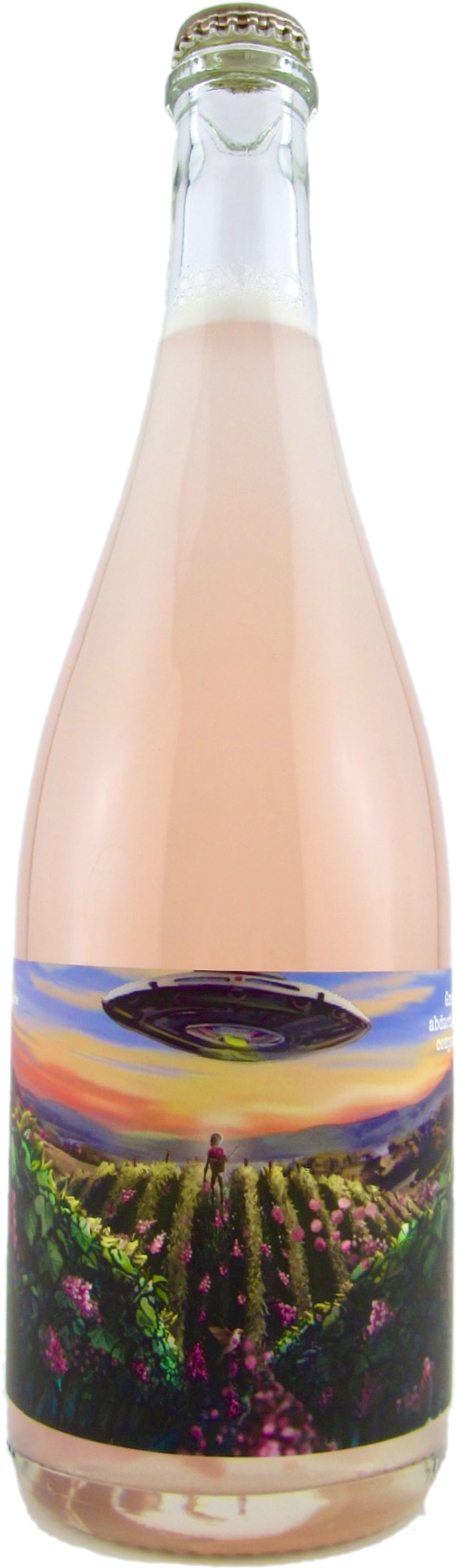 Grape Abduction Company - Piquette Rosé