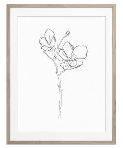 Flower Blossom No.2 | Fine Art Print
