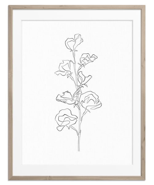 Flower Blossom No.1 | Fine Art Print