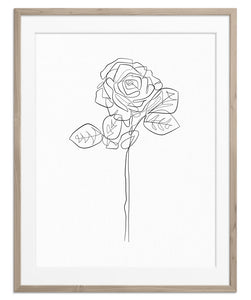 Spontaneous Rose | Fine Art Print