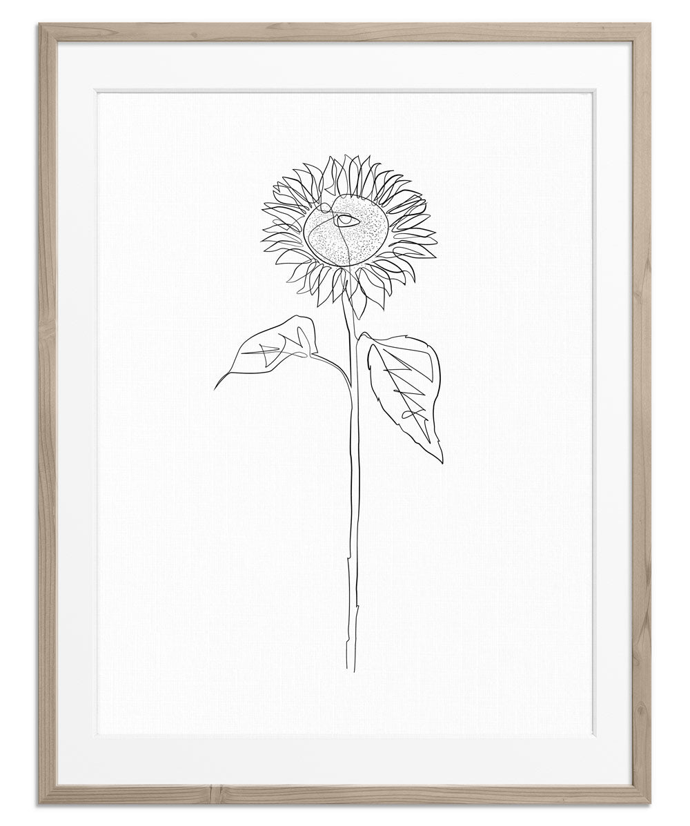 Sunflower With Two Leaves | Fine Art Print