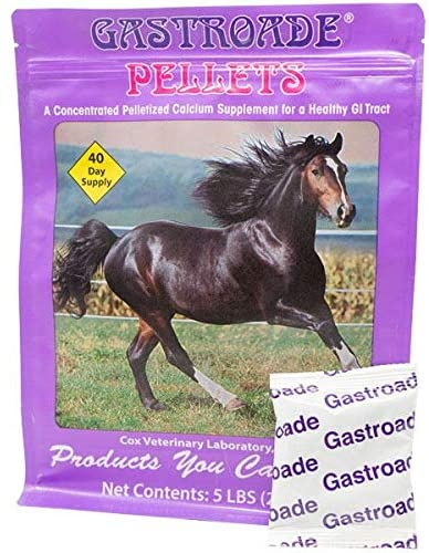 Gastroade EZE-GO Packs. Pelleted Top-Dress for Treating Equine Gastric Distress. Highly Palatable. Convenient, Pre-Measured Packs. Natural, Drug-Free Ingredients. 40-Day Supply. Made in USA.