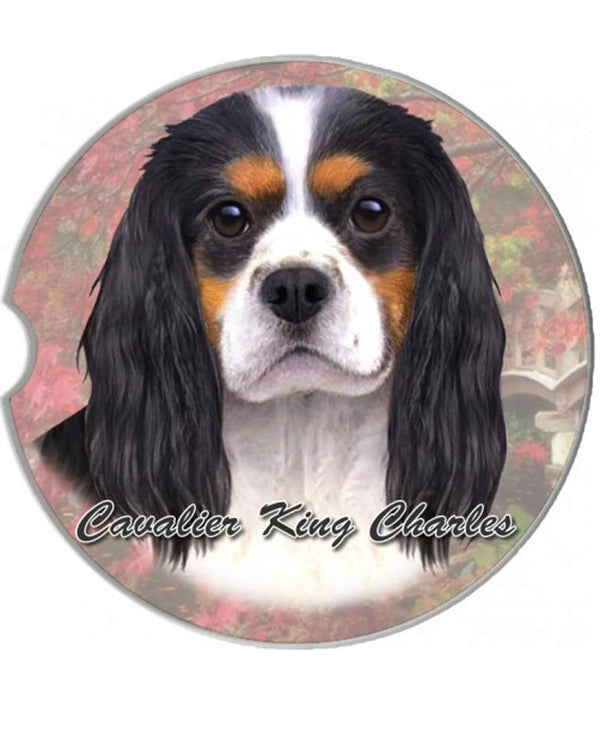 231-19 Cavalier King Charles Spaniel Car Coaster