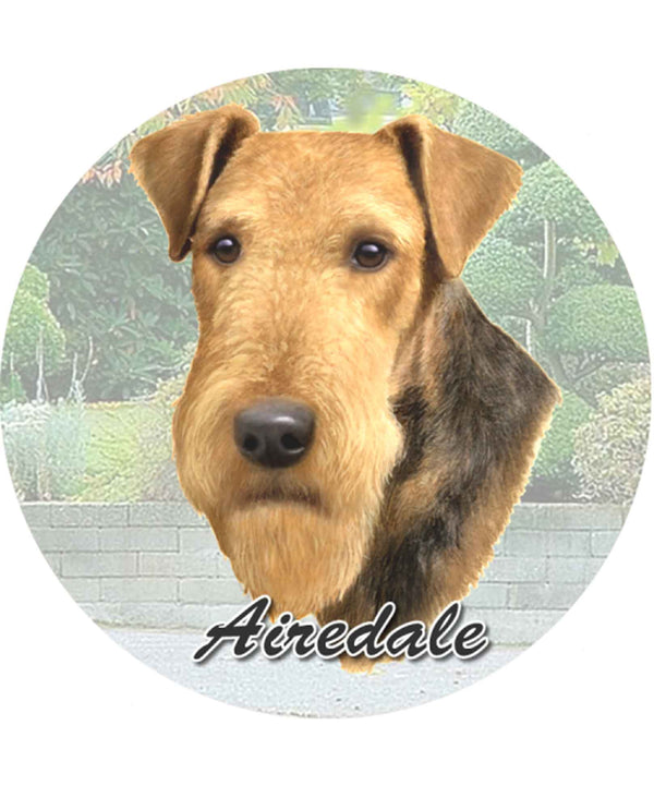 231-57 Airedale Car Coaster