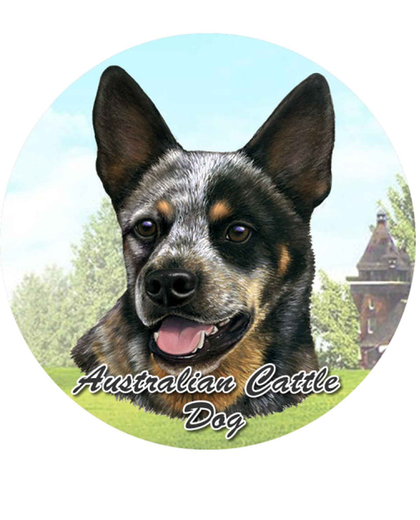 231-90 Australian Cattle Dog Car Coaster
