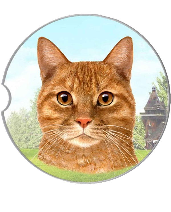 232-8 Orange Tabby Car Coaster