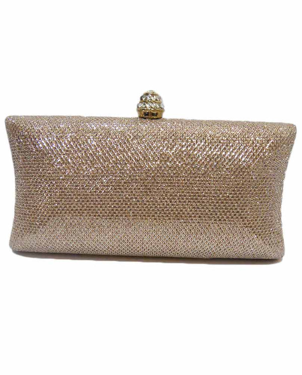 Champagne Shimmer Evening Bag
