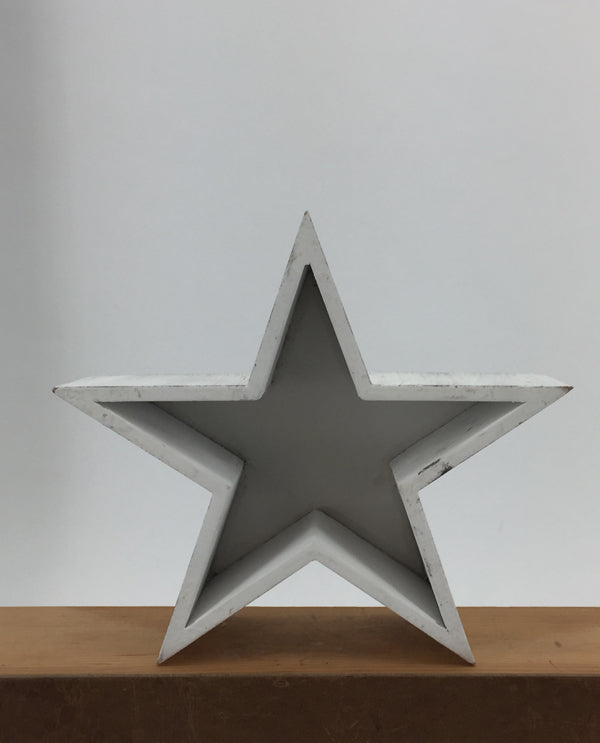 Small Wood Star Planter White