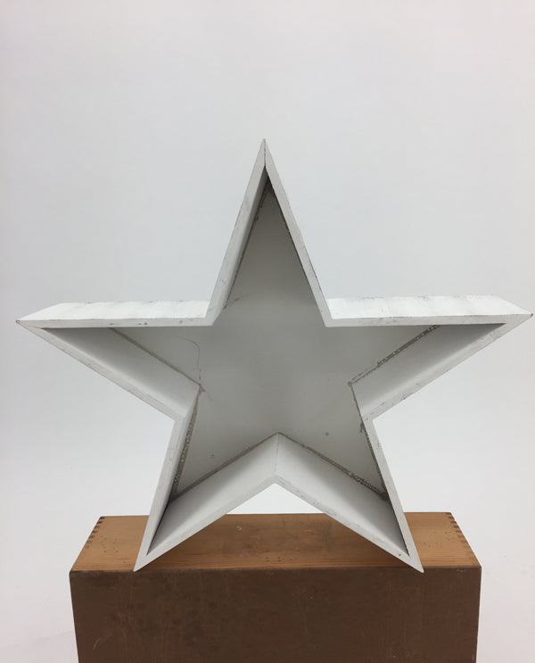 Large Wooden Star Planter White