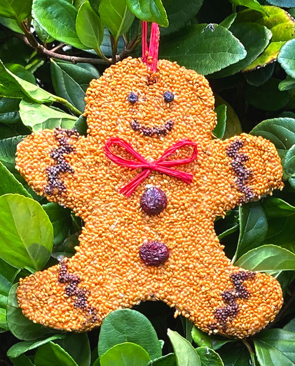 Mr Bird Gingerbread Man Tweet