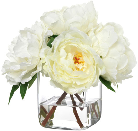 White Linen Peonies By Diane James
