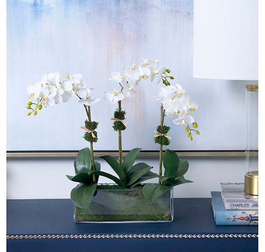 TRES CHIC FAUX Orchids by Diane James