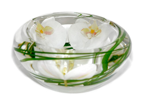White Phalaenopsis Medium Flower Bowl