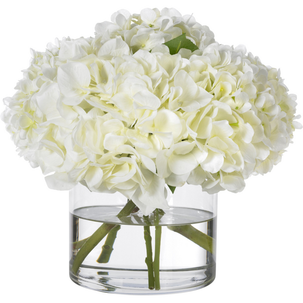 Heavenly White Hydrangea