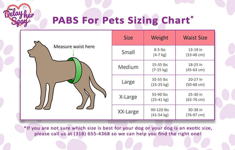 Dog Chastity Belt Sizing Chart