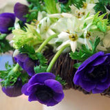 Anemone 'Mr Fokker' in arrangement