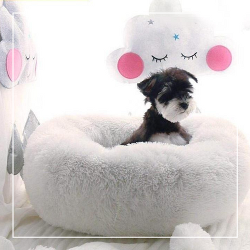 Soft plush pet bed - party-paw
