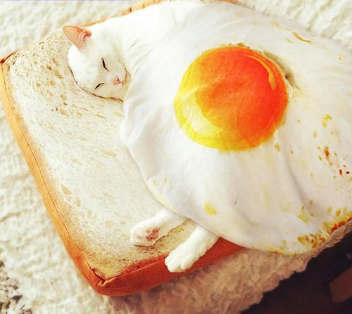 Toast bread pet cushion and poached egg blanket