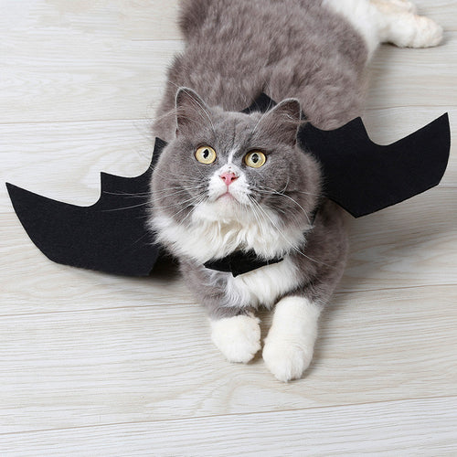Bat wings pet costume