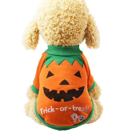 Halloween Pumpkin pet sweater