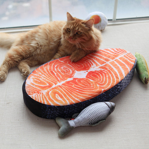 Salmon cat pillow cushion